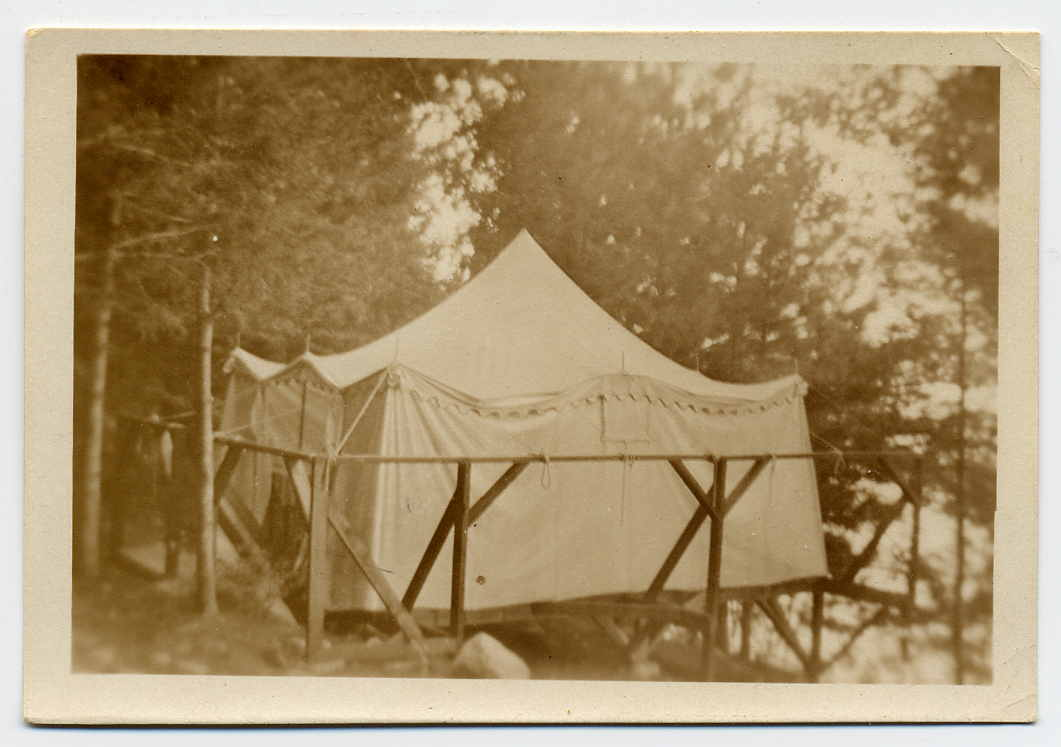 Pinebanks for Tent platform construction
